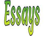 essays1